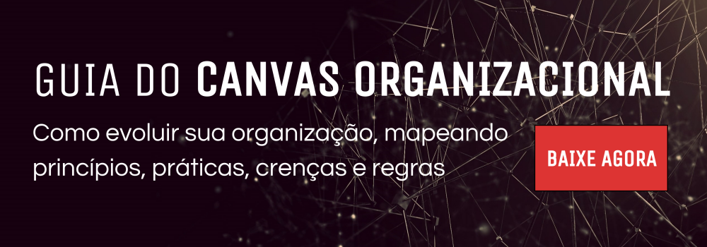 Guia do Canvas Organizacional
